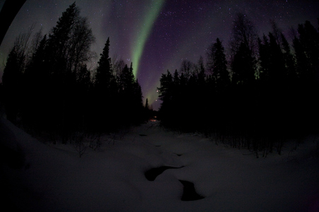 Northern Lights Spring 2012