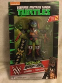Teenage Mutant Ninja Turtles WWE Mashup