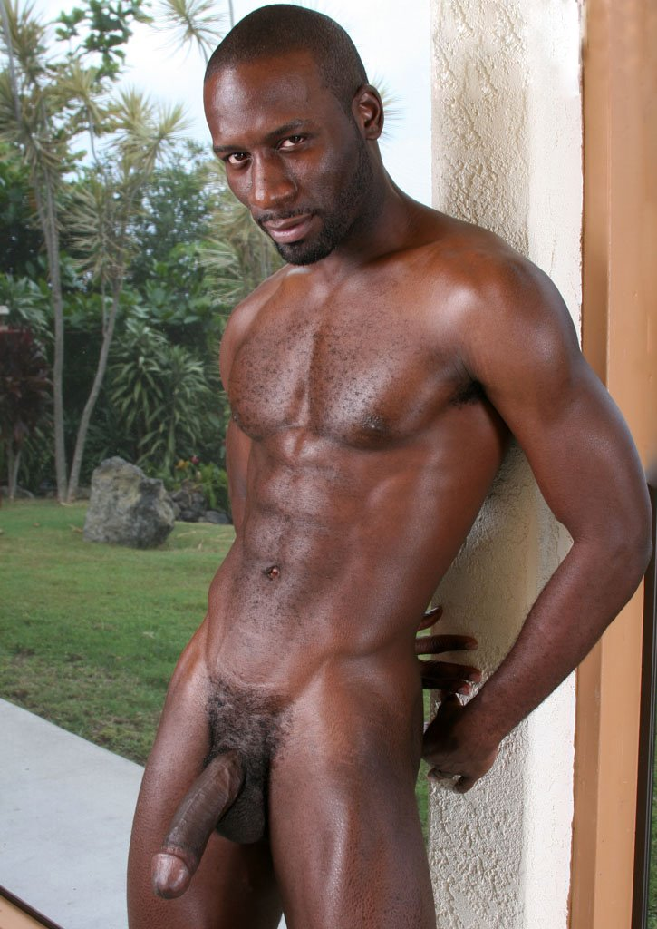 Abnormally Black Cocks Gay