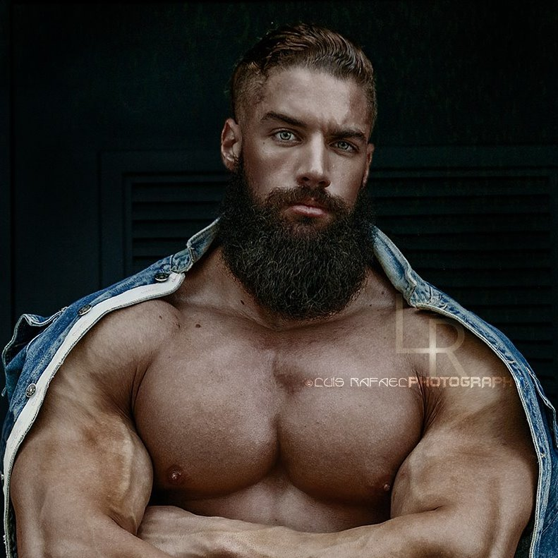Bodybuilding Motivation Bull