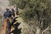 Cronan Ranch 2009