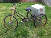 worksman trike