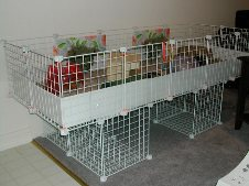 Cavy Cages - A Base and Stand with Grids