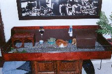 Cavy Cages - Miscellaneous Photos