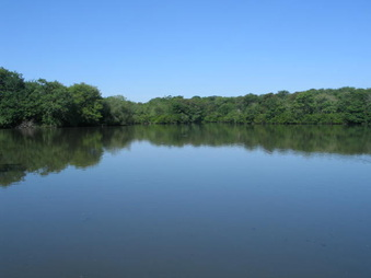 Belmont Lake 3