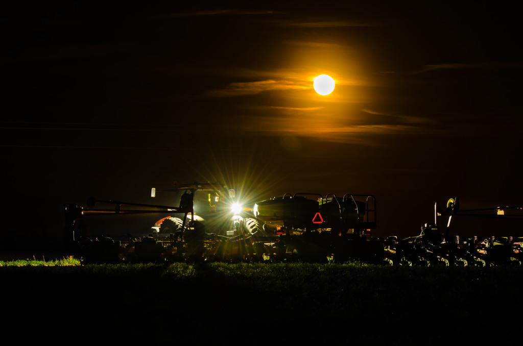 MoonPlanter.jpg