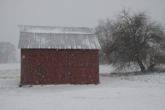 Snow photographs