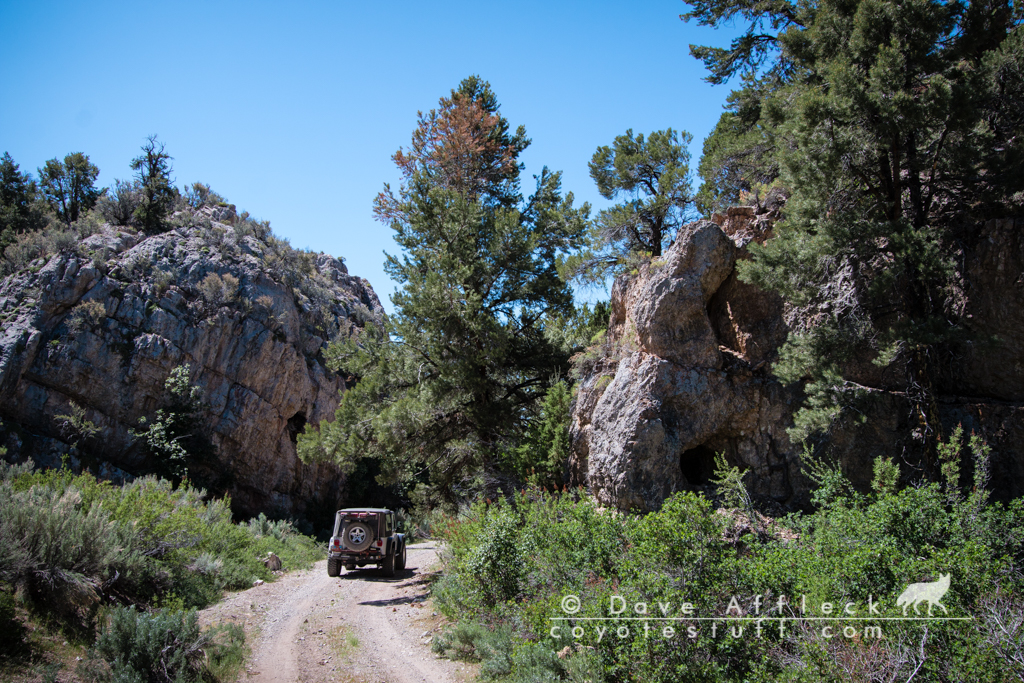 McEllen Canyon