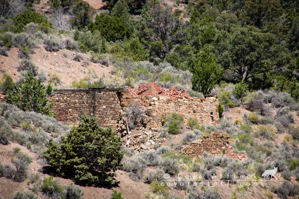 Mill ruins at Eberhardt