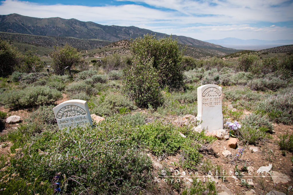 Second and third graves of Paul children