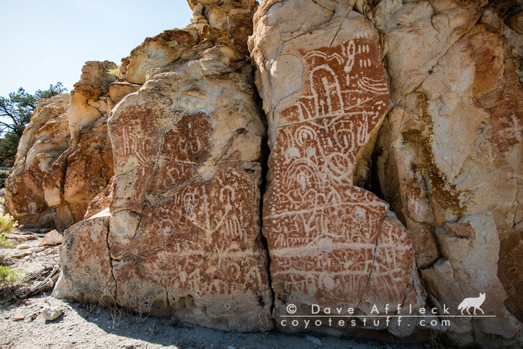 One of many rock art panels in the canyon