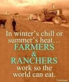 Farming 2015