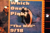 Which One's Pink? Performs The Wall