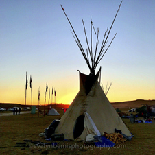 Oceti Sakowin at Standing Rock