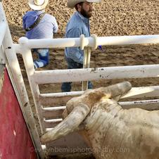Rodeo de Santa Fe 2017