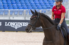 World Equestrian Games - 2018