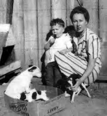 GAILS RAT TERRIERS FROM THE PAST
