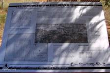 Enlarge photo 76