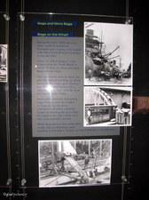Enlarge photo 41