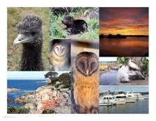 Tasmania #09