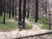 Big Bear Camping Trip
