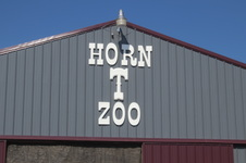 Zoo Trip for Veterans