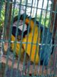 Enlarge photo 52