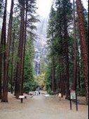 Yosemite for Thanksgiving