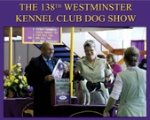 Westminster 2014