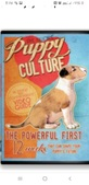 Puppy culture..the only way to raise a p