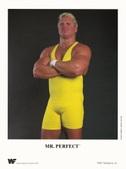 WWF Unnumbered Wrestling Promo Photos