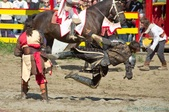 Joust: Tournament of Arms