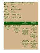 Enlarge HTML Document 5