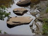 Nature Hike 191
