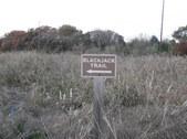 Nature Hike 196