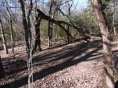 Nature Hike 199