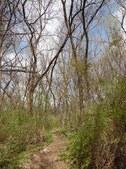 Nature Hike 202