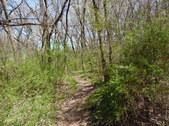 Nature Hike 203