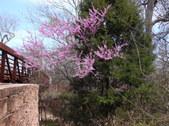 Nature Hike 205