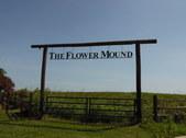The Flower Mound 11