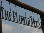 The Flower Mound 12