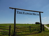 The Flower Mound 8