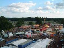 newforestshow2003