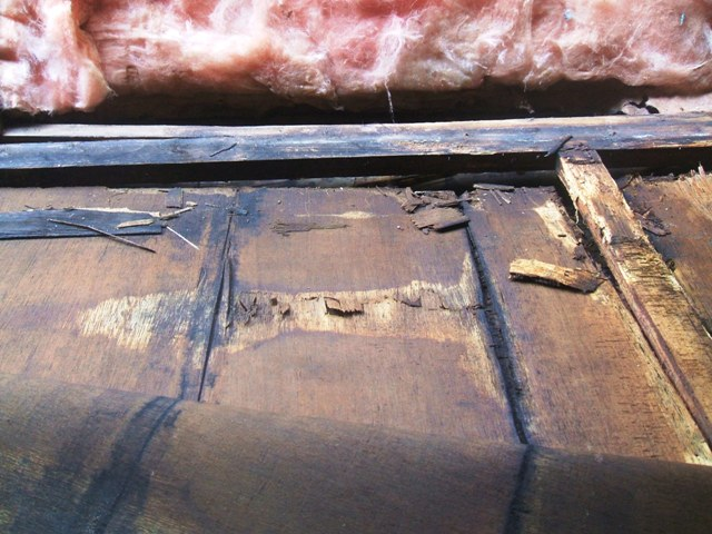 Coachman bunk area repair