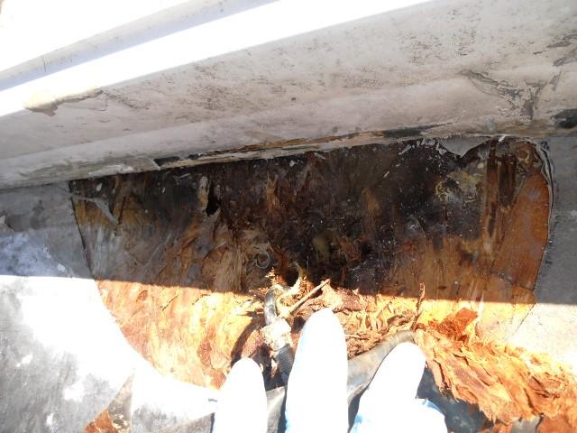 Sunny Brook Roof Repair