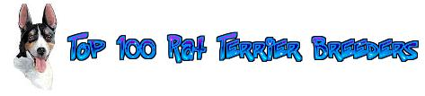 Top 100 Rat Terrier Breeders in the US
