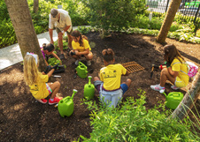 Planting Seedlings in Butterfly Garden