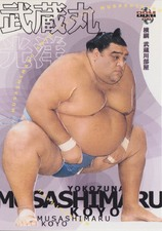 BBM Sumo 大相撲 Card Collection 1997-2021