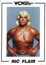 Supplex55 WCW Promo Photo Album