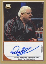 Pro Wrestling Trading Card Collection